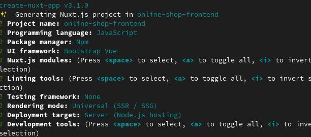 create nuxt project